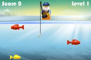 Fish Catcher Level 1