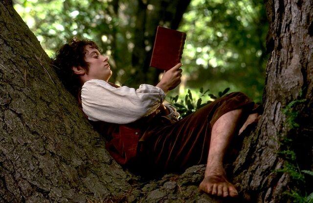 File:Frodo-reading.jpg