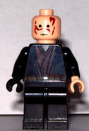 Burned Anakin Skywalker