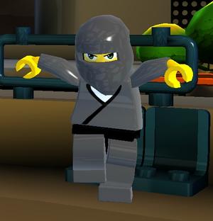 Ninja Student