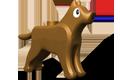 Brown Dog Hatchling