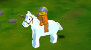 Nexus on horse