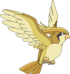 018 Pidgeot AG Shiny