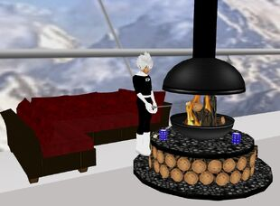 Fireplace Coach and Roasting