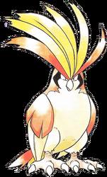 018 Pidgeot RG