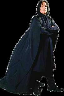 Severus Snape 5