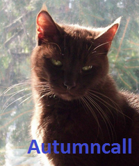 File:Autumncall.png