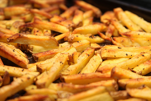 File:Oven roasted french fries.jpg