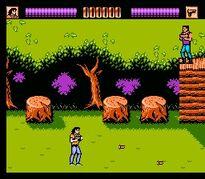 NES Screenshot 1