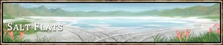 Location banner Salt Flats