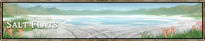 Location banner Salt Flats