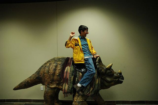 File:800px-Creation museum triceratops saddle.jpg