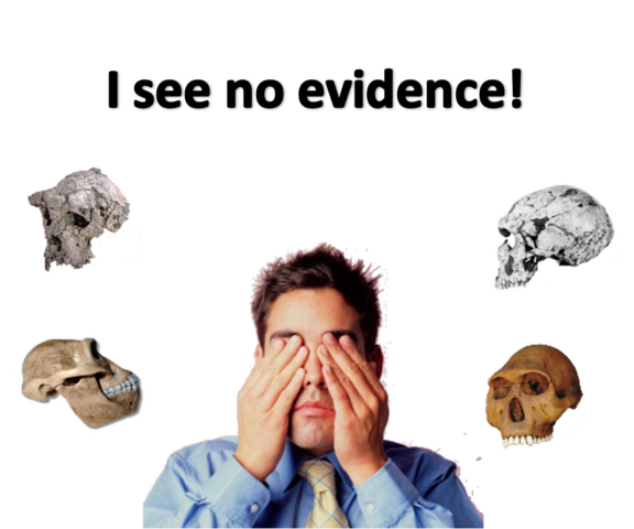 File:Evidence.png
