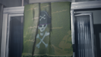 Piratetowel