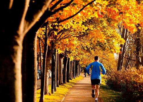File:Morning exercise.jpg