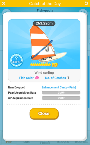 File:Wind surfing.png