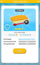 Sea Urchin Meal