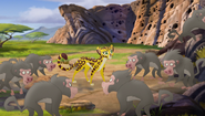 Baboons (460)