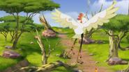Ono-the-tickbird (3)