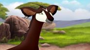 The-imaginary-okapi (75)