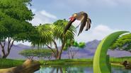 Ono-the-tickbird (372)