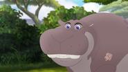 The-imaginary-okapi (56)