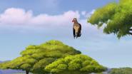 Ono-the-tickbird (225)