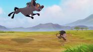 Follow-that-hippo (261)
