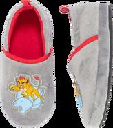 Slippers-kion