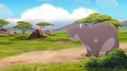 The-imaginary-okapi (66)