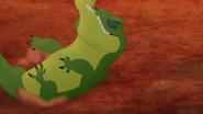 Let-sleeping-crocs-lie (295)