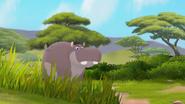 The-imaginary-okapi (37)