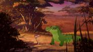 Let-sleeping-crocs-lie (258)