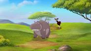 The-imaginary-okapi (82)