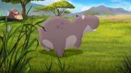 Follow-that-hippo (128)