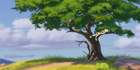 Laini's Tree/Gallery