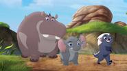 Follow-that-hippo (106)