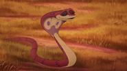 Let-sleeping-crocs-lie (261)