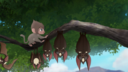Baboons (205)