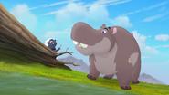 Baboons (262)