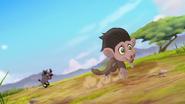 Follow-that-hippo (258)