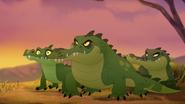 Let-sleeping-crocs-lie (266)
