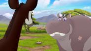The-imaginary-okapi (72)