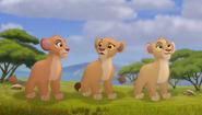 Baboons (21)