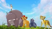 Baboons (493)
