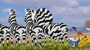 The-mbali-fields-migration (39)