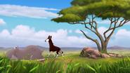 The-imaginary-okapi (79)