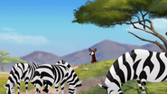The-imaginary-okapi (318)