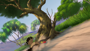 Ono-the-tickbird (459)