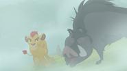 The-lost-gorillas (259)